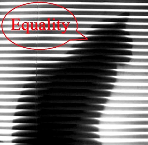 catequaltiy1